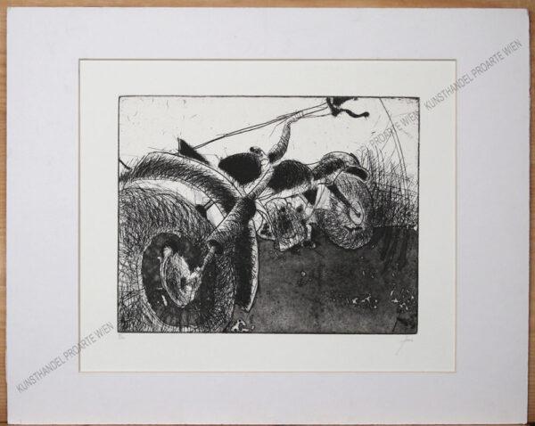 Herwig Zens - Harley Davidson