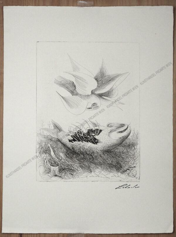 Anton Lehmden - Möwe und Fisch