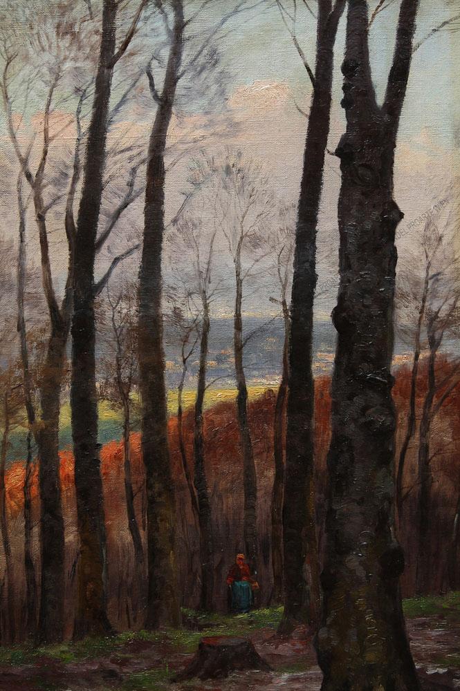 RobertWeber - Herbstwald